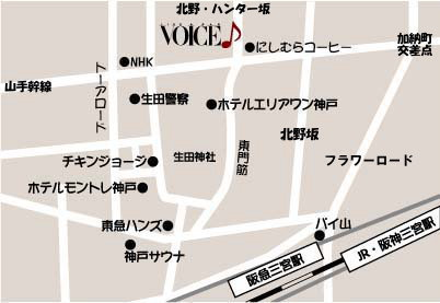 VOICEmap111