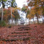 「鶏足寺」紅葉
