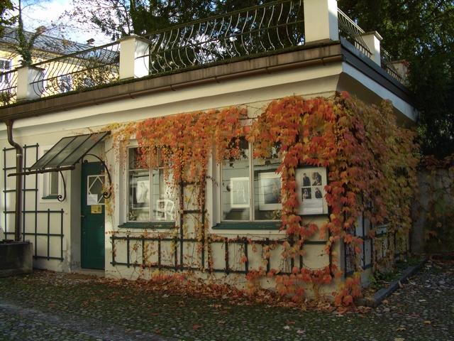「欧州の秋」ザルツブルク プラハ