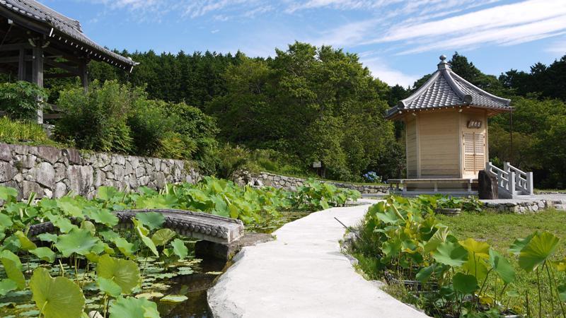 蓮池と蛙「瞑想の庭」高天山