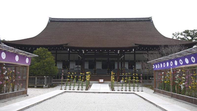 旧嵯峨御所 「 大覚寺」
